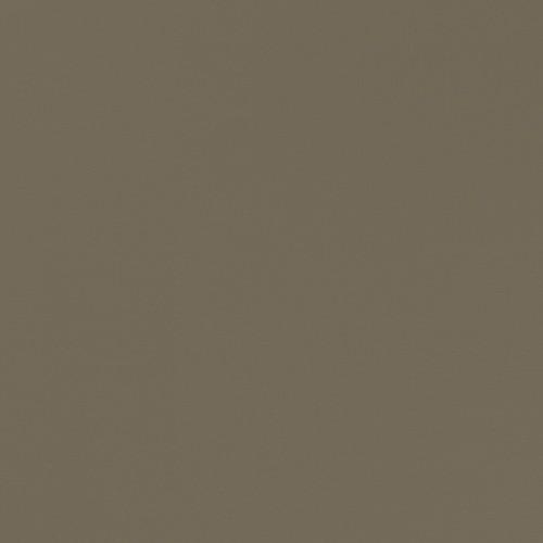 PANBRUSH.49.150