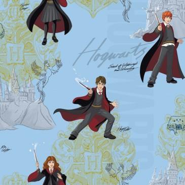 Harry Potter Warner Bros Fabric HPMAGIC.380.140