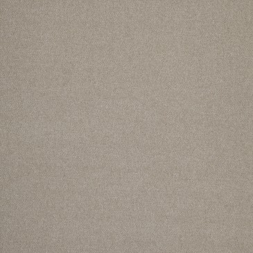 Fabric SUNBONE.49.140